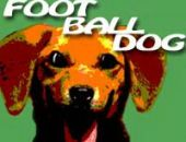 Super Football Amusant Chien