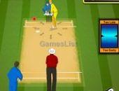 IPL de Cricket 2013
