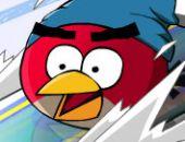 Les Oiseaux En Colère Rapide Ski